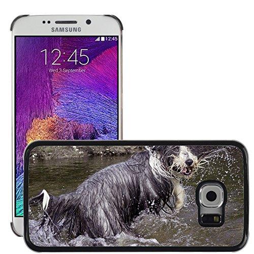 Nur Handy HOT STYLE HANDY PC Hard Case Cover//m00138686Bearded Collie Hund Wet komisch//Samsung Galaxy S6Edge (passt nicht für (Komisch Passt)