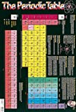 The Periodic Table (Wall Chart)