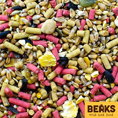 Bird seed 80% & Suet pellets 20% mix 1 x 20kg Bags from starmer ltd