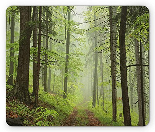 Outdoor Mouse Pad, Trail Trough Foggy Alders Beeches Oaks Coniferous Grove Hiking Theme, Standard Size Rectangle Non-Slip Rubber Mousepad, Light Green Light Yellow -