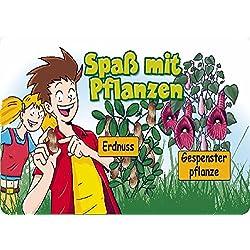 SAFLAX - Anzuchtset - Spaß mit Pflanzen - Klein - Mit 2 Samensorten, Gewächshaus, Anzuchtsubstrat, Zellfasertöpfen zum Umtopfen und Anleitung
