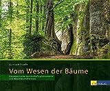Vom Wesen der Bäume (Amazon.de)