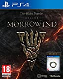 The Elder Scrolls Online : Morrowind - PlayStation 4 [Edizione: Francia]