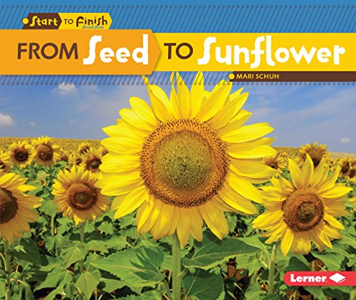 From Seed to Sunflower (Start to Finish: Second Series) (1 Und Ding Ding 2 Schuhe)