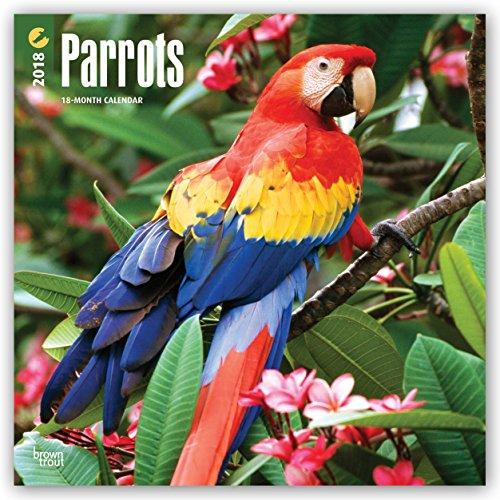 Descargar Libro Parrots - Papageien 2018 - 18-Monatskalender: Original BrownTrout-Kalender de Browntrout Publishers