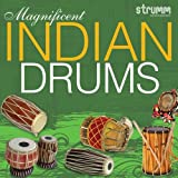 #7: Magnificent Indian Drums