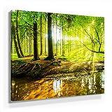 Wald und Bäume Bild A180, 1 Teil 80x80cm Leinwand auf Holzrahmen aufgespannt, FineArt Print, UV-Stabil und Wasserfest, Kunstdruck für Büro Oder Wohnzimmer, Deko Bild