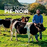 Bretonne pie-noir : La vache des paysans heureux
