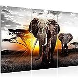 Bilder Afrika Elefant Wandbild 120 x 80 cm - 3 Teilig Vlies - Leinwand Bild XXL Format Wandbilder Wohnzimmer Wohnung Deko Kunstdrucke Gelb Grau -100% MADE IN GERMANY - Fertig zum Aufhängen 007631a