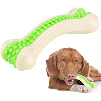 Foodie Puppies Bite Resistant Durable Aggressive Chewers Arched Bone Teething Toy for Puppies & Dogs - (Medium, Color May Vary)