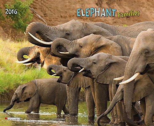 Elephant Families 2016: Kalender 2016 (Dcor Calendars) (Decor 45x60)