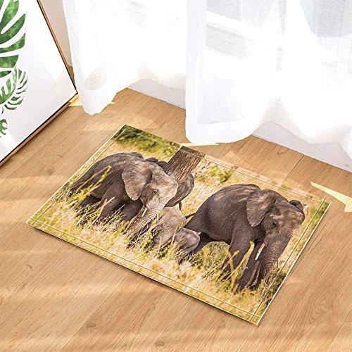 Decoración de la vida silvestre Familia de elefantes Safari Caminando en la...