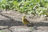 Erdtmanns Sommer-Streufutter im Eimer, 1er Pack (1 x 5 kg) - 10