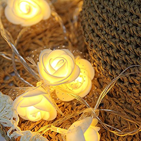 20 LED Mini Lace Rose Fairy String Lights Flower Indoor for Girl Bedroom ,Battery Operated Festive Lights,Warm White,Good Decorative for for Mirror