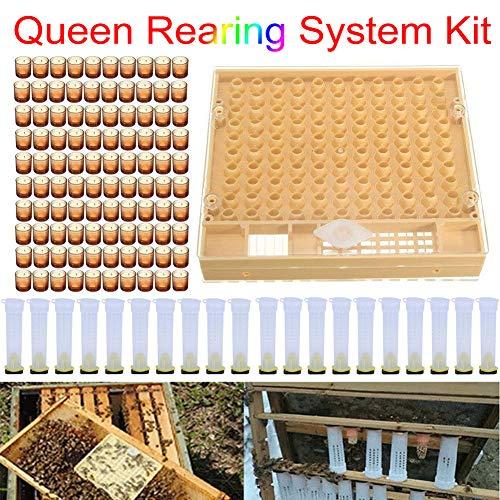 lymty Imkerei Komplette Königin Aufzucht Zelle Cup kit Catcher Box Haar Roll Cage Cupularve Imkerei System Bee Keeper Tool Set -