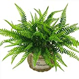 #9: Pindia Miniature Artificial Small Green Leaf Shrub Grass Persian Leaves Plant Indoor/Outdoor, Home & Office, Garden, Restaurant, Hotel,Party Décor