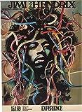 Jimi Hendrix reproduction Concert photo affiche 40x30cms