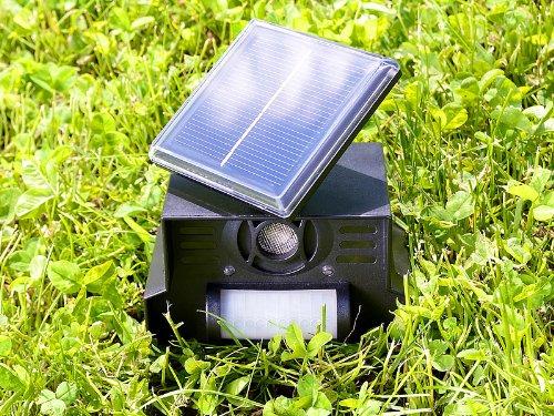 Ultraschall + Blitz licht Solar Hunde und Katzen Schreck - vertreibt Hund und Katze