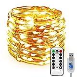 LED Kupferdraht Lichterkette, Nasharia 100LEDs Lichterkette im 10M USB-Anschluss mit Fernbedienung 8 Programm LED-Lichter für Party, Weihnachten, Halloween, Hochzeit, Hochzeit, Party (Warmweiß)