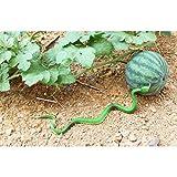 Tinksky-Realista-Soft-Latex-Animal-Fake-serpiente-jardn-ornamentos-Joke-Prank-simulado-animal-serpiente-falsa-serpiente-decoracin-para-Halloween-12-Pack