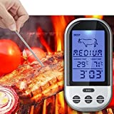 Best Digital Meat Thermometer Wirelesses - AST Works Programmable Wireless Remote Digital Thermometer Probe Review