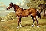 Fine Art Print–Stilton–A Hunter, 1900von Bentley Global Arts Gruppe, canvas, multi, 8 x 6