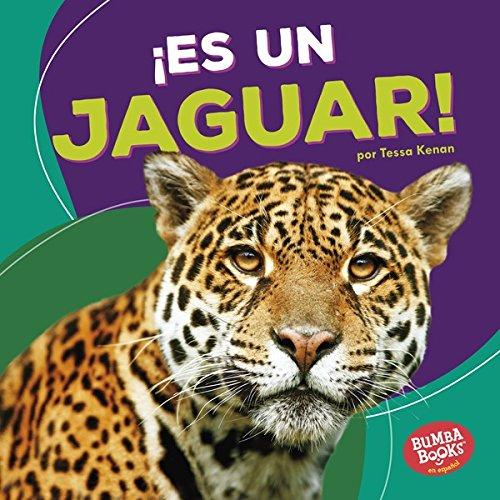 ¡Es un jaguar! (It's a Jaguar!) (Bumba Books ® en español — Animales de la selva tropical (Rain Forest Animals)) por Tessa Kenan