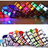 CAN_Deal LED Halsband Light - LED Leuchtschlauch Leuchthalsband Hundehalsband Hund
