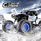Jack Royal 1/20 Remote Control High Speed Vehicle 2.4Ghz Truck Buggy Off-Road Toys (Color May Vary)