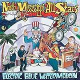 Songtexte von North Mississippi Allstars - Electric Blue Watermelon