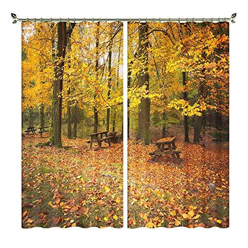 XFKL Herbst Naturlandschaft 3D Druck Blackout Vorhänge, Noise Reduction Solid Blackout Lichtreduzierung Fenster verkleiden 2 Panels,D,W264*H241cm -