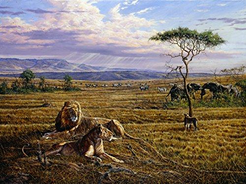 'MARA View'-Print, anerkannter Simbabwe Künstler Larry Norton-Giclée Druck auf Leinwand-Größe 1010mm x 760mm-Druck & Versand aus Südafrika-zugelassenen Verkäufer Tiger Print Shift