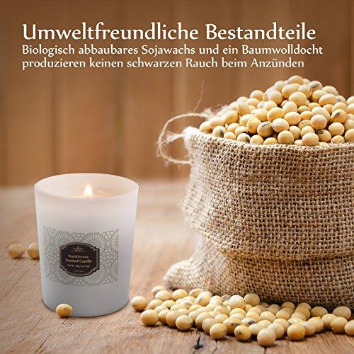 Anjou Duftkerzen 4-Duftvarianten Aromatherapie Set perfektes Geschenk aus umweltfreundliches biologisches Sojawachs, lange Lebensdauer mit 20-25 Stunden