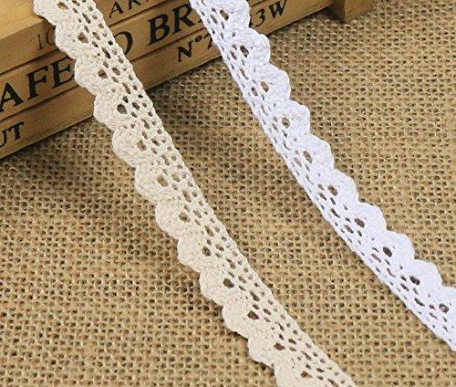 Yulakes 10 Meter Vintage Spitzenband Weiss Spitzenborte Häkel-Borte Spitze Nähen Karten Tagebuch Scrapbooking Geschenkbox Deko--Y01007 (weiß) - Spitzenband 1