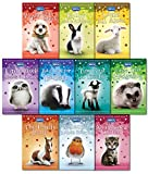 RSPCA Animal Rescue Pets 10 Children's Books Collection Set-Bad Day for Badger, A Snowy Robin Rescue, Tiny Goat in Trouble, Lamb all alone, Abandoned Kitten, Little lost Hedgehog, lonely Pony, Little owl needs a home, Puppy gets stuck, Bunny..etc