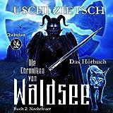 Nachtfeuer: Die Chroniken von Waldsee 2