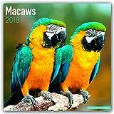 Macaws – Ara-Papageien – Aras 2018: Original Avonside-Kalender [Mehrsprachig] [Kalender] (Wall-Kalender)