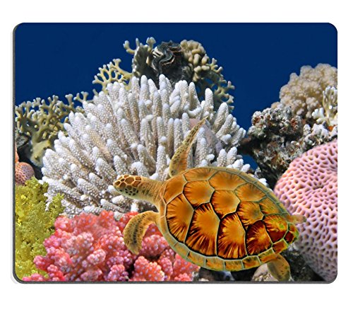 msd-natural-rubber-gaming-mousepad-image-id-10057829-underwater-world-sea-turtle-near-chang-island-s