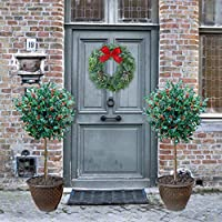 YouGarden Holly Bush Standards with Berries and Gold Effect Planters (Pair)