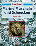 Image de Lexikon Marine Muscheln und Schnecken