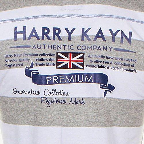 Harry Kayn- Polo lange Ärmel Mann COSTRI gris/blanc