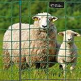 VOSS.farming Premium Elektronetz 108cm farmNET 50m Schafzaun Ziegennetz Pfähle 2 Spitzen grün