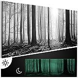 murando - Leinwand Bilder nachtleuchtend 135x45 cm - Tag & Nacht Wandbilder - Premium - Bilder 3D nachleuchtende Farben - Kunstdruck - Vlies Leinwand XXL - Fertig Aufgespannt - Waldlandschaft Natur Wald Panorama Baum schwarz-weiß grau c-B-0235-ag-a