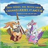 Deux fr??res, une petite s??ur - Chamailleries et amiti??: ??pisode de la vie des trois petits lapins: Volume 3 (Livres de valeur pour enfants) by Patrick Segler (2015-03-18)