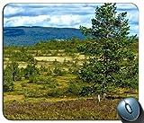 Norwegen Glade Gras Bäume 108722Generic Maßgeschneiderte Gummi Mauspad Gaming Mauspad