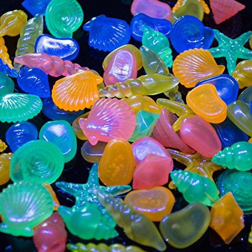 WINOMO 60pz Ciottoli ghiaia pietre decorative colorate Conchiglia pietre per acquario (colore misto)