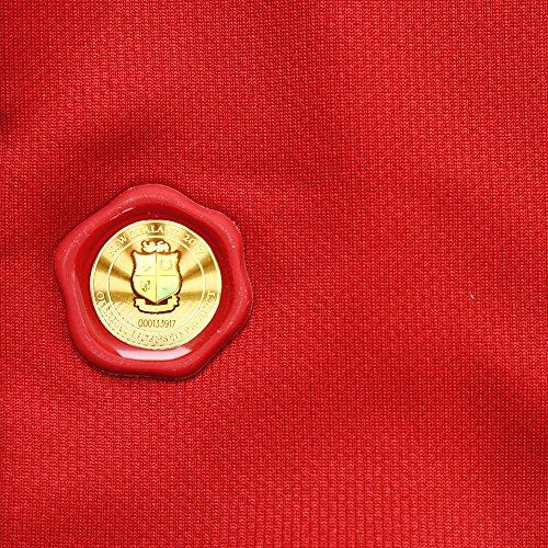 British & Irish Lions Men's VapoShield Matchday Pro Jersey - Tango Red, Small