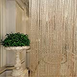 Türvorhang, Folie Fransen Shimmer Vorhang für Tür Fenster Dekoration Geburtstag Hochzeit Party, String Dew Drop silber Vorhang 1m * 2m, champagnerfarben, Free Size