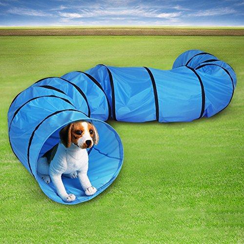 GOTOTOP Hundetunnel Agilitytunnel Spieltunnel Hunde Katzen Training Tunnel blau (550 * 60cm)