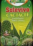 SOLEVIVO CACTACEE TERRICCIO PER PIANTE GRASSE DA 5 LT